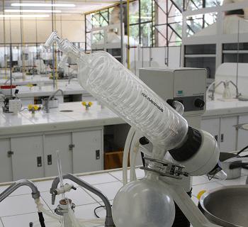 sq-sample33